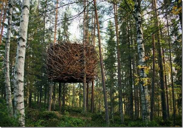 Tree-Hotel-Sweden-13