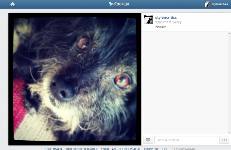 instagram_stylencritics